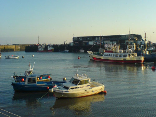 bridlington habour